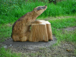 Badger carving PCP