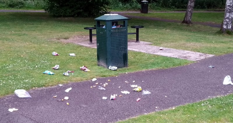 Litter around bins